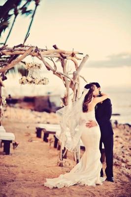 Maui Wedding Rental Driftwood Arch