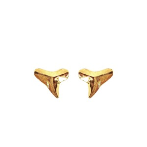 Shark Tooth Teeth Earrings Jewelry Silver Gold