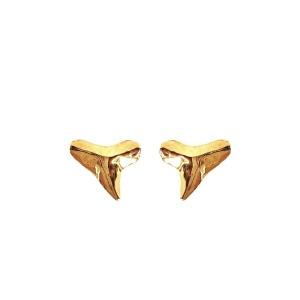 Shark Tooth Teeth Earrings Jewelry Silver Gold