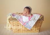 maui newborn photography