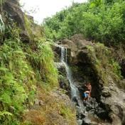 waterfall tour hike private maui