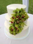 Maui Sweet Cake Wedding Cake with Green Cymbidum Orchids