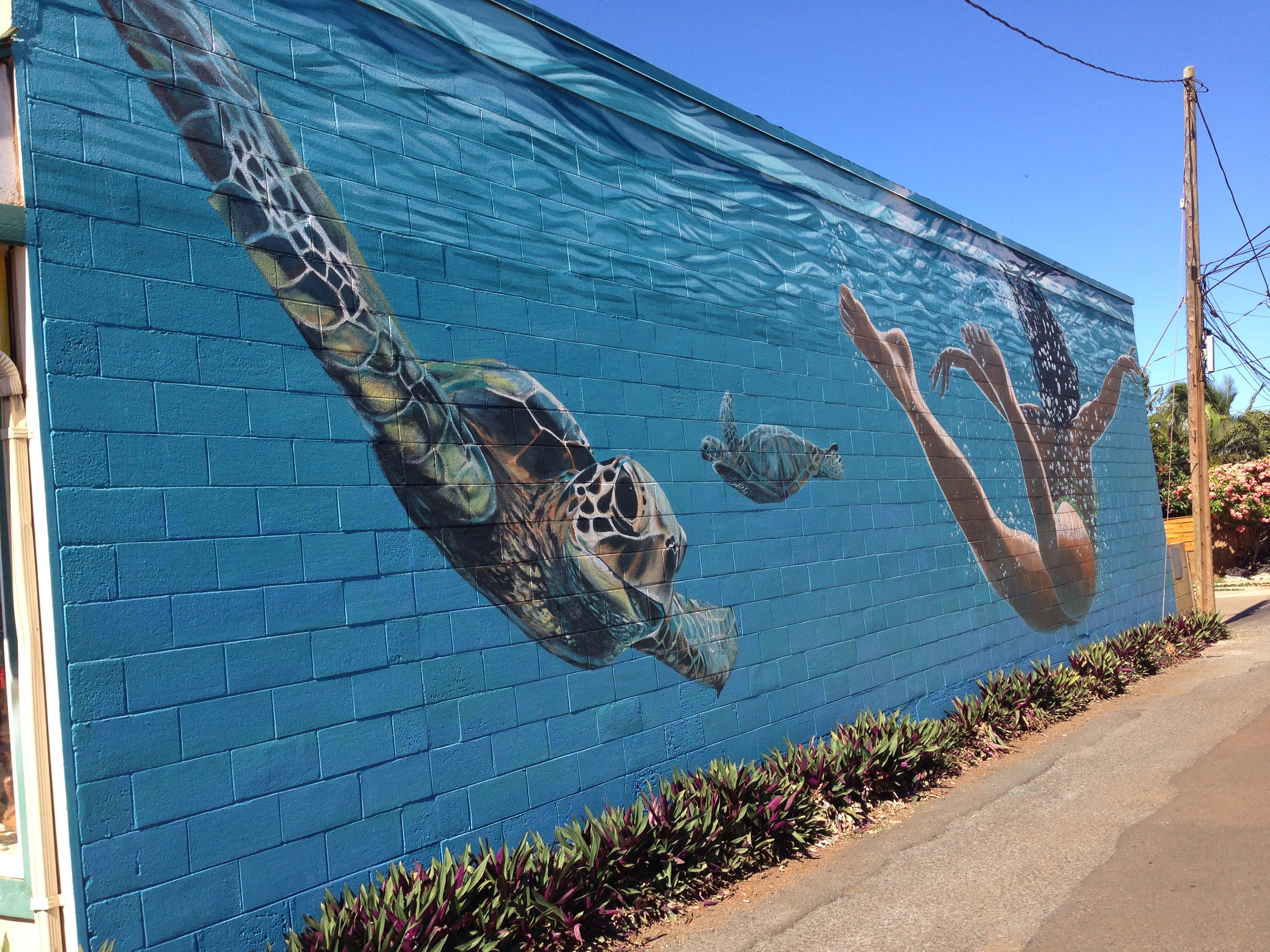 Home Decor Wall Murals Moving And Shaking In Paia Maui Made