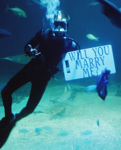 maui underwater marriage proposal