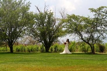 Ocean Vodka Wedding Venue Maui Hawaii Private