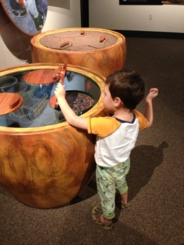 Maui Interactive Museum Science Center Exhibits Kids