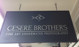cesere.brothers.underwater.photography