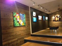 wood wall art gallery display modern