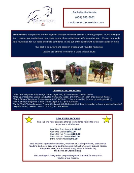 maui horse lessons children adult riding horse stable