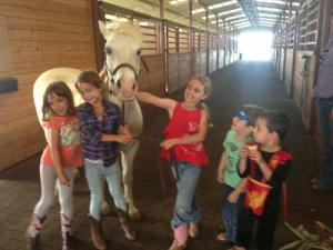 maui horseback riding lessons summer camp