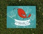 mahalo.greeting.card.red.bird