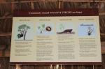 invasive.animals.hawaii.sign.
