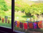 molokai.tie.dye.shirt.lei