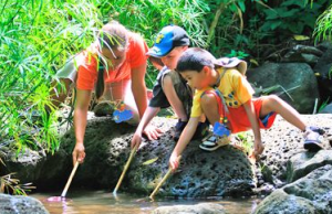 hawaii nature center kids birthday parties