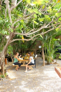 sports club of the pacific paia maui juice bar