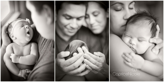 maui newborn photographer