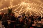 carden.tent.fundraiser