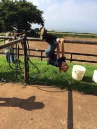 fun at maui horse camp spring break 2015