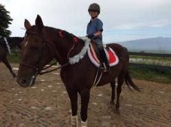 maui horse camp spring break 2015