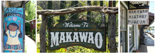 MAKAWAO signs maui where to shop
